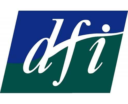 Disability Federation Ireland logo 2into3 Client