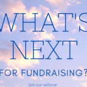 2into3 fundraising Webinar series